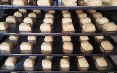 Mantecados blancos recien horneados - Productos Santa Gema